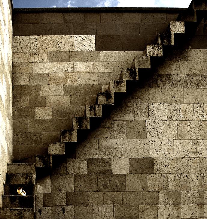 2005-09-25 - Cat On Stairway